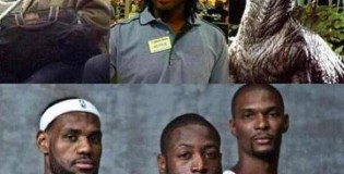 LeBron, Wade, Bosh – Started From The Bottom Now We Here – Heat Edition – So Wrong But TOO Funny!