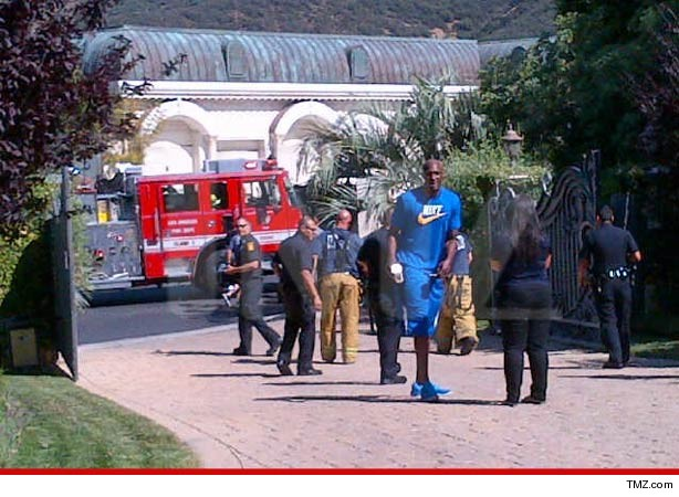 0510-lamar-odom-swatting-tmz-article-2